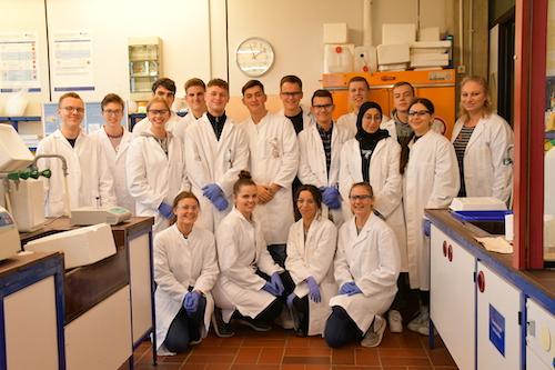 Biologie Leistungskurs der Hohen Landesschule untersucht den genetischen Fingerabdruck